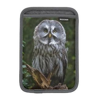 Birds of prey Great grey owl photograph case Sleeve For iPad Mini