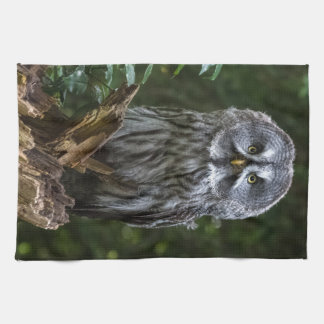 Birds of prey Great grey owl photograph Tea Towel