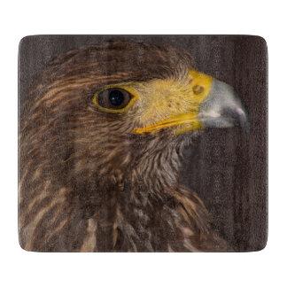 Birds of prey hawk photograph glass chopping board