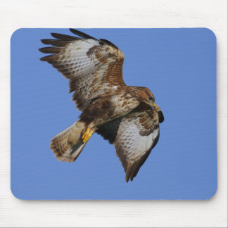 Birds of Prey Mousemats