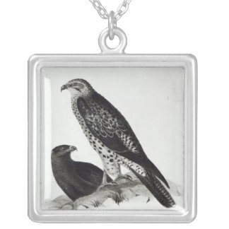 Birds of Prey Silver Plated Necklace