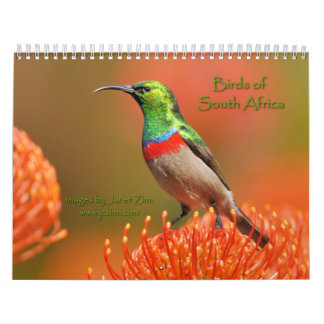 Birds of South Africa Calendar