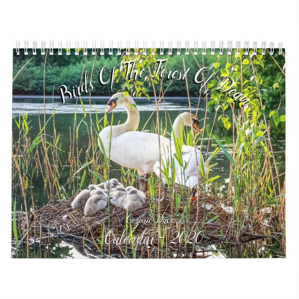 Birds of The Forest Of Dean 2020 Calendar