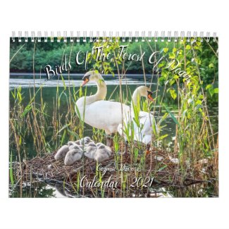 Birds of The Forest Of Dean 2021 Calendar