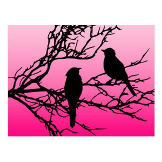 Birds on a Branch, Black Against Dawn Pink Postcard
