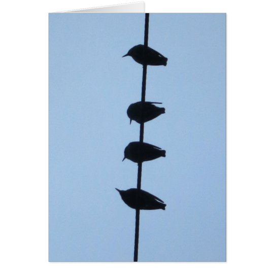 Birds on a Line 1 Card