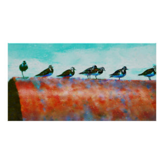 Birds On A Pipe Poster