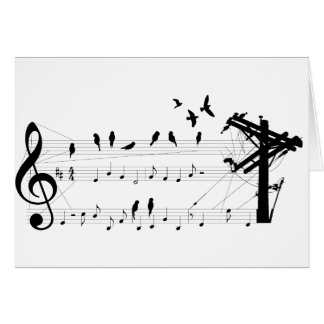 Birds on a Score card