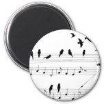 Birds on a Score Magnets