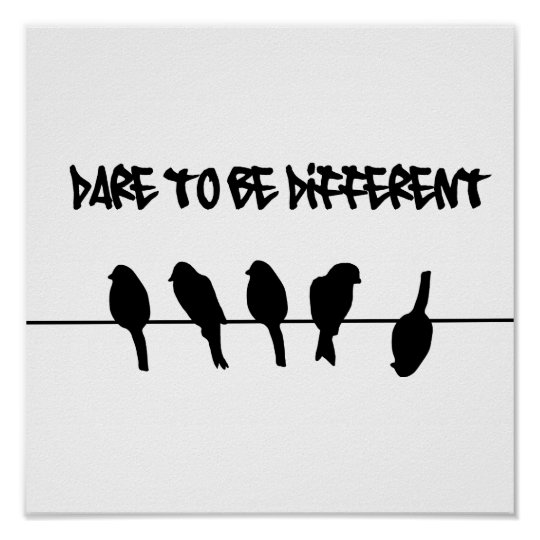 Birds on a wire – dare to be