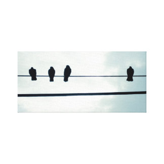 Birds on a wire gallery wrapped canvas