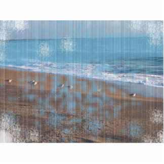 birds on beach grunged stripes shore image photo cut outs