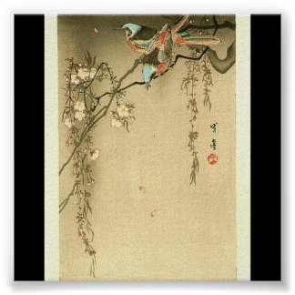 Birds on Cherry Tree by Seitei Watanabe 1851- 1918 Poster