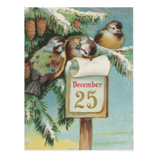 Birds on Decemeber 25th Postcard