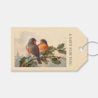 Birds on holly branch