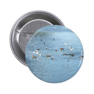 Birds On Summer River 6 Cm Round Badge