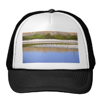 Birds On The River Bank Hats