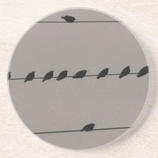 Birds on Wire Coaster