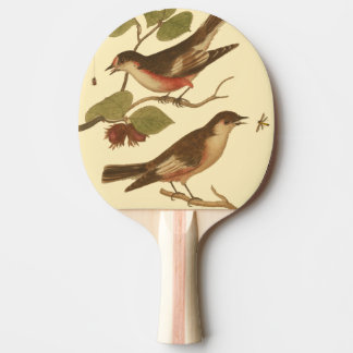 Birds Perched on Branches Eating Insects Ping Pong Paddle
