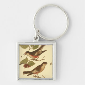 Birds Perched on Branches Eating Insects Silver-Colored Square Key Ring