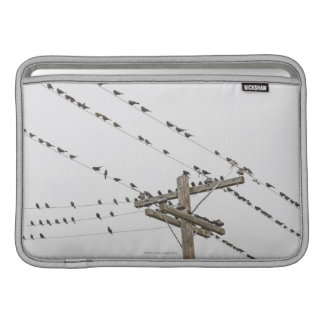 Birds perched on wires sleeve for MacBook air