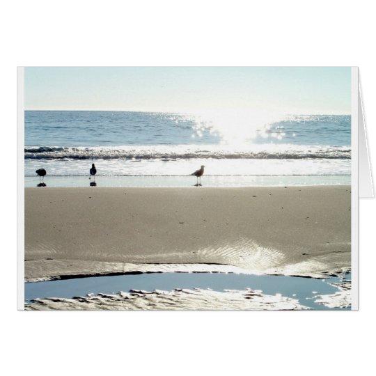Birds Photo Card