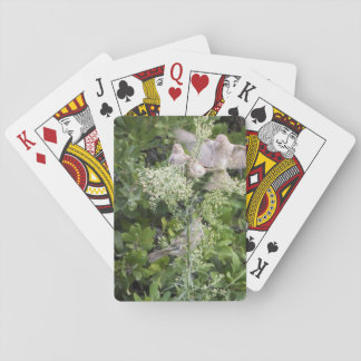 Birds & Plants Playing Cards