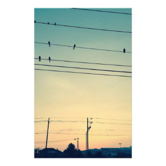 Birds Stationery