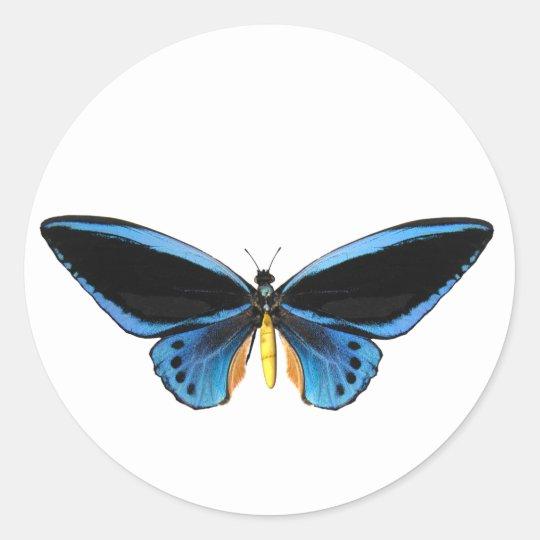 Birdwing Butterfly Classic Round Sticker