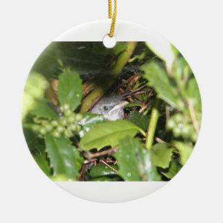 Birdy Ornament