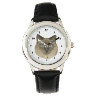 Birman Cat Watch