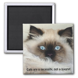 Birman - Ragdoll Cat Lover Magnet