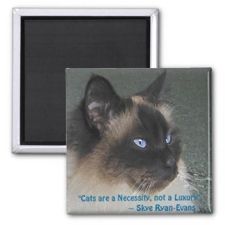 BIRMAN RAGDOLL CAT Magnet Series
