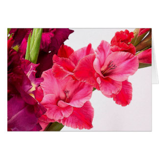 Birth Month Flower - August - Gladiolus (Gladioli) Card