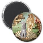 Birth of Venus-Irish Wolfhound #6 Magnet