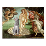 Birth of Venus-Irish Wolfhound #6 Postcard