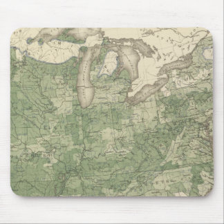Birth Rate US, Statistical US Lithograph Mouse Pad