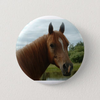 Birthday 012 6 cm round badge