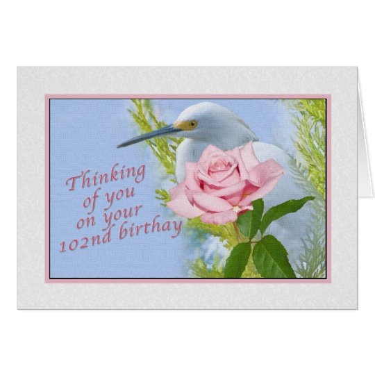 Birthday, 102nd, Snowy Egret and Pink Rose Card