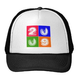 Birthday 2009 hat