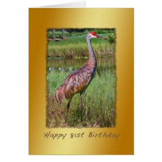 Birthday, 81st, Sandhill Crane Bird Card