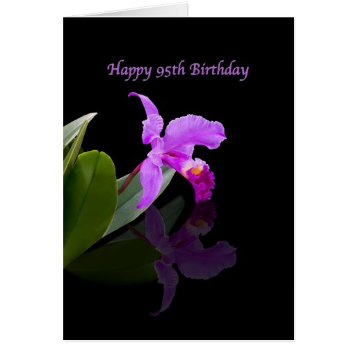 Birthday, 95th, Orchid on Black Greeting Cards