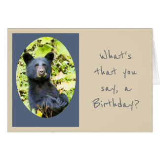 Birthday Bear Eat the Cake First Animal Humor Card