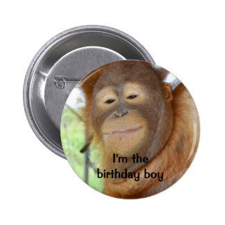 Birthday Boy Buttons