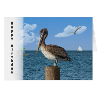 Birthday, Brown Pelican with Seascape Card