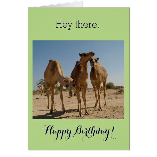 Birthday Camels Card