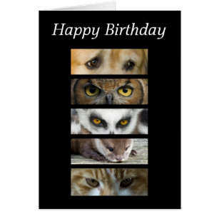 Dog and cat happy birthday cards invitations zazzle birthday card animals eyes bookmarktalkfo