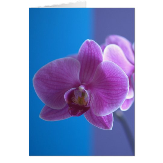 Birthday Card for Daughter -- Orchid