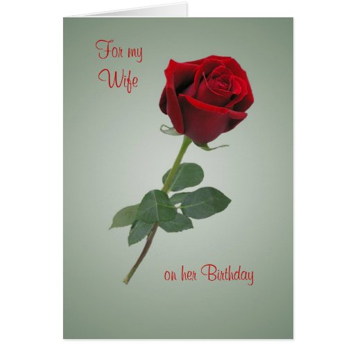 birthday card for wife with red rose zazzle