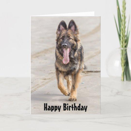 Birthday Card German Shepherd Dog Alsatian Zazzle